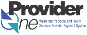 ProviderOne_logo-box
